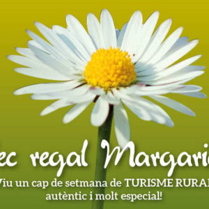 Xec Regal Margarida