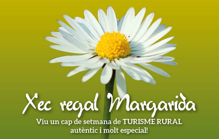 Xec Regal Margarida Preu: 50€